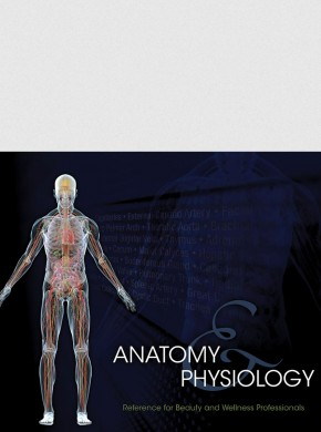 MILADY'S STUDENT REFERENCE FOR ANATOMY & PHYSIOLOGY CHARTS, 2ND ED.